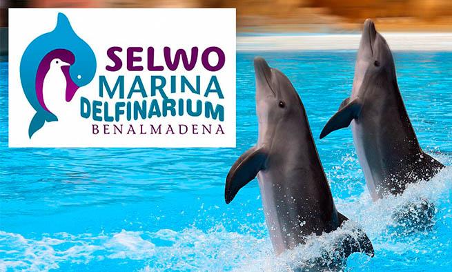 Resultado de imagen de selwo marina